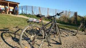 Bird Watching Bike Tour Malaga