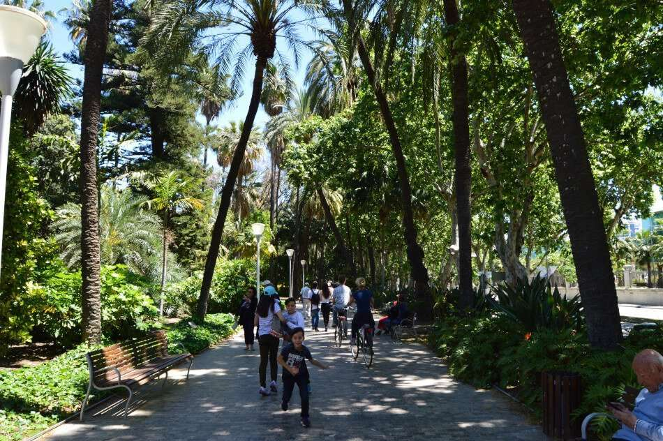 Walking through Malaga's park