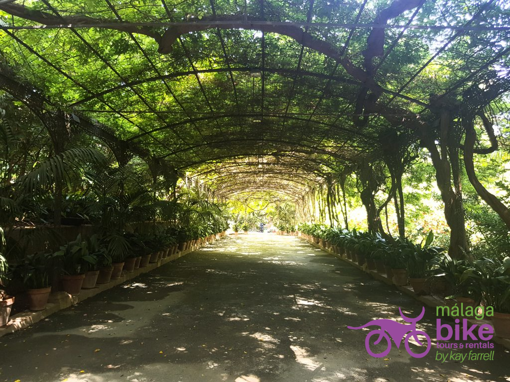 Pergola in the botanical gardens, Cycling in Malaga takes you to these beautiful spots!