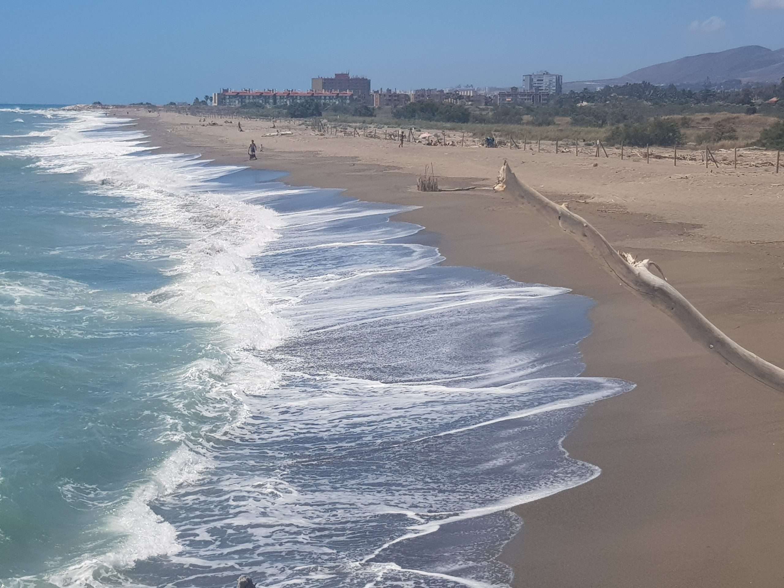 Things to do in Malaga  visit the Guadalhorce Nature Reserve and the only wild beach on the Malaga coastline
